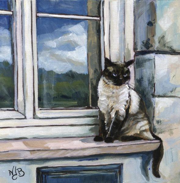Le chat de Sabine