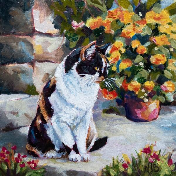 La chatte du quartier du Fourmiguier