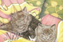 Copains - Crayons de couleur 60 x 50 cm Dispo