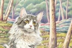Le chat des forêts Crayons de couleur - 35 x 25 cm - vendu
