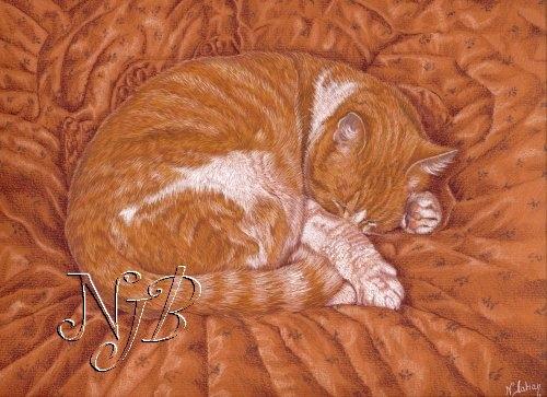 Le chat roux - 20 x 30 cm