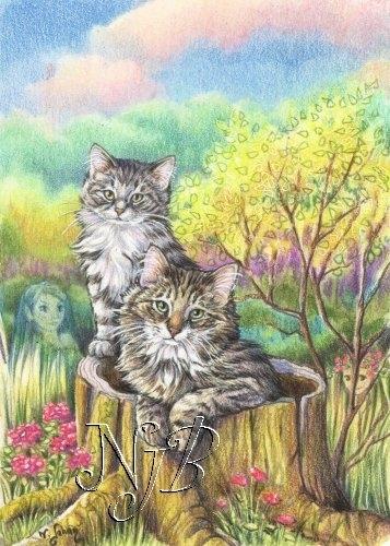 Chats des forêts - 20 x 30
