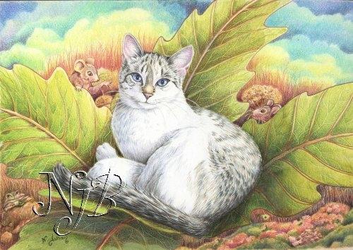 Opale rêve - 20 x 30 Coll particulière