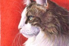 Portrait de Vaïko - 20 x 30 cm