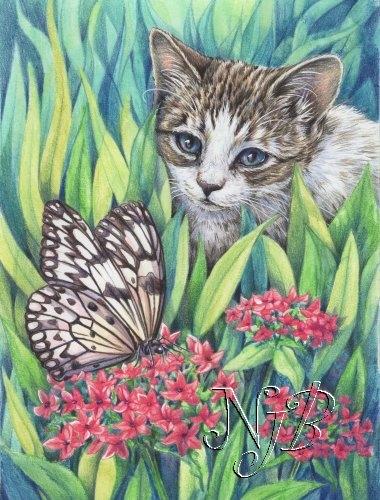 Chat fleur et papillon Crayons de couleur - 30 x 20 cm - dispo
