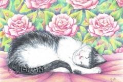 Rêves roses - Crayons de couleurs 20 cm x 30 cm