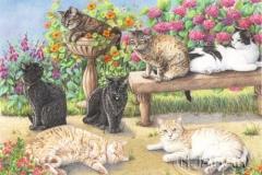 Les sept chats - Crayons de couleurs 40 cm x 30 cm