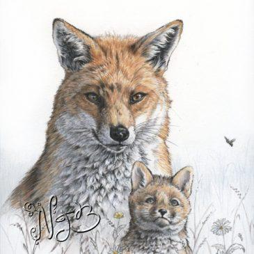 Le renard et son petit