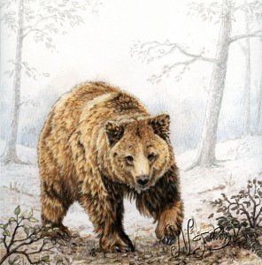 big-ours