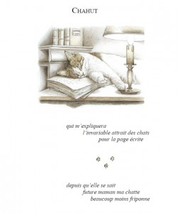 chaikus page19
