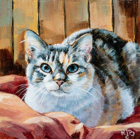 cat portrait, cat painting, Acrylic painting