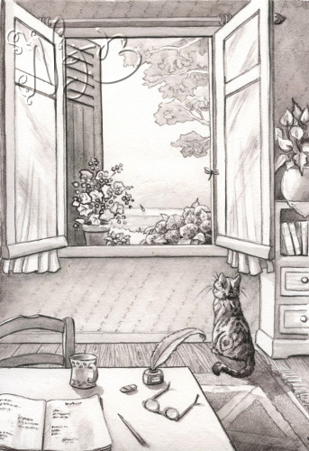 Cat book illustration