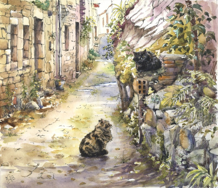 chats, aquarelle, cats, street