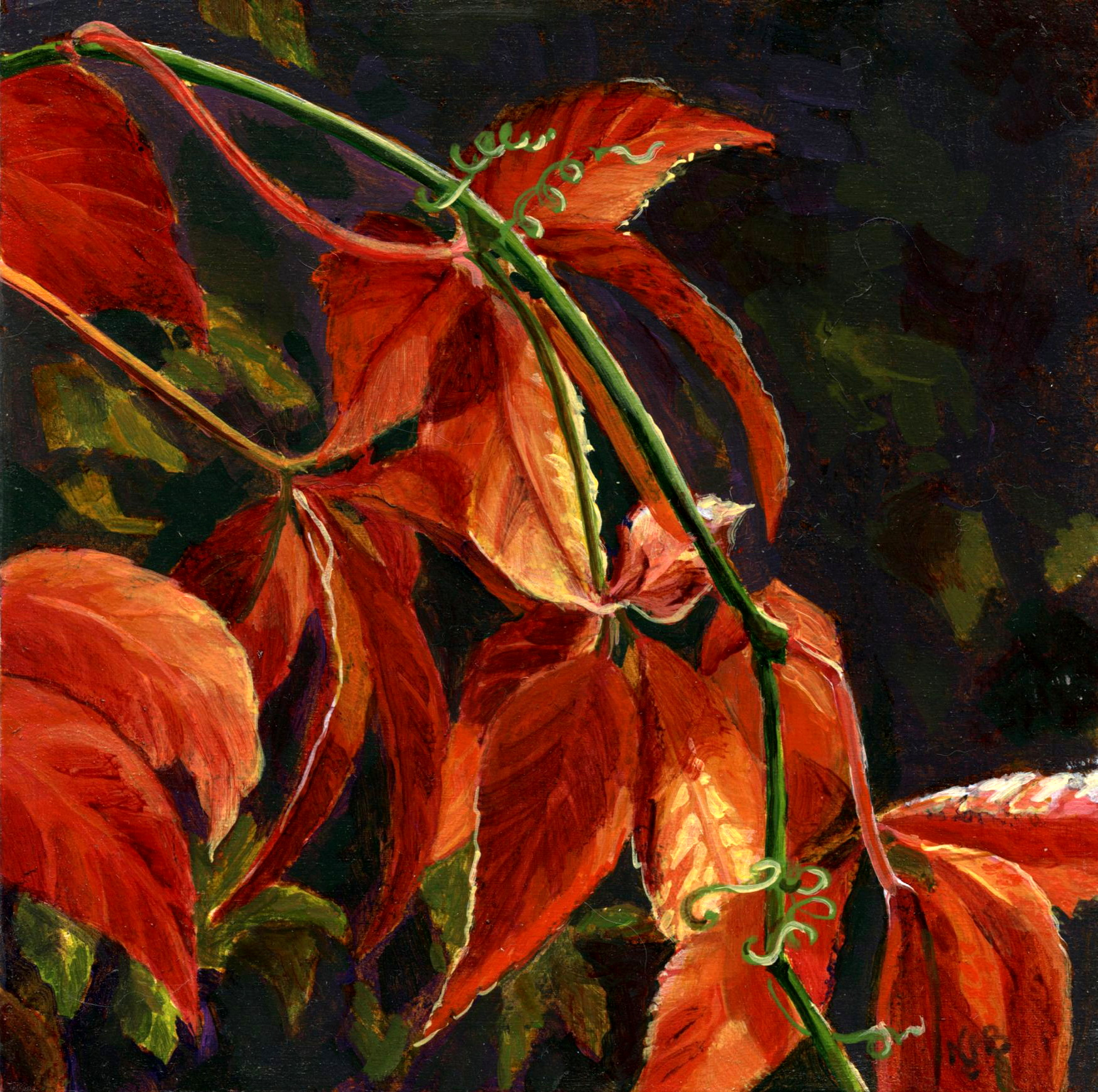 Virginia creeper - Acrylic painting