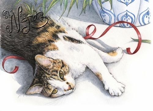 Cat book illustration